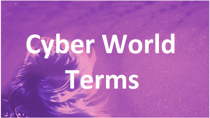 cyber security terms